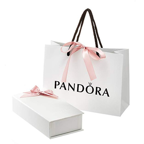 Pandora Signature Bracelet Package