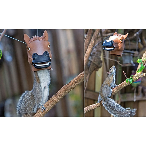 Horse Head Squirrel Feeder [Archie McPhee] - In Use