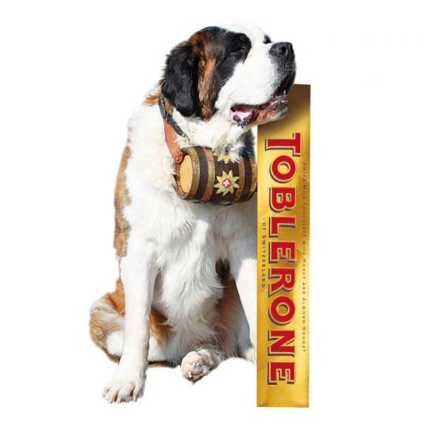 Giant Toblerone Bar [With Dog]