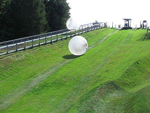 Human Hamster Ball 3f