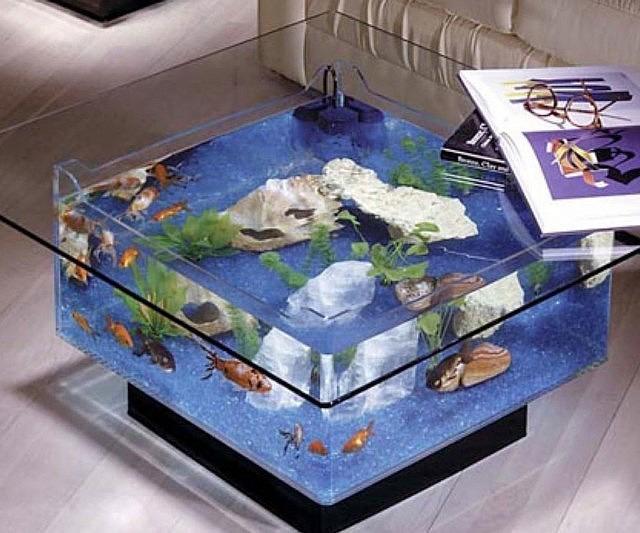 Midwest Tropical Fountain Coffee Table Aquarium Tank 2