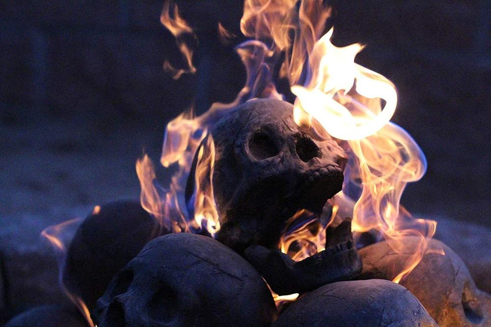 Fire Pit Skull Logs 7