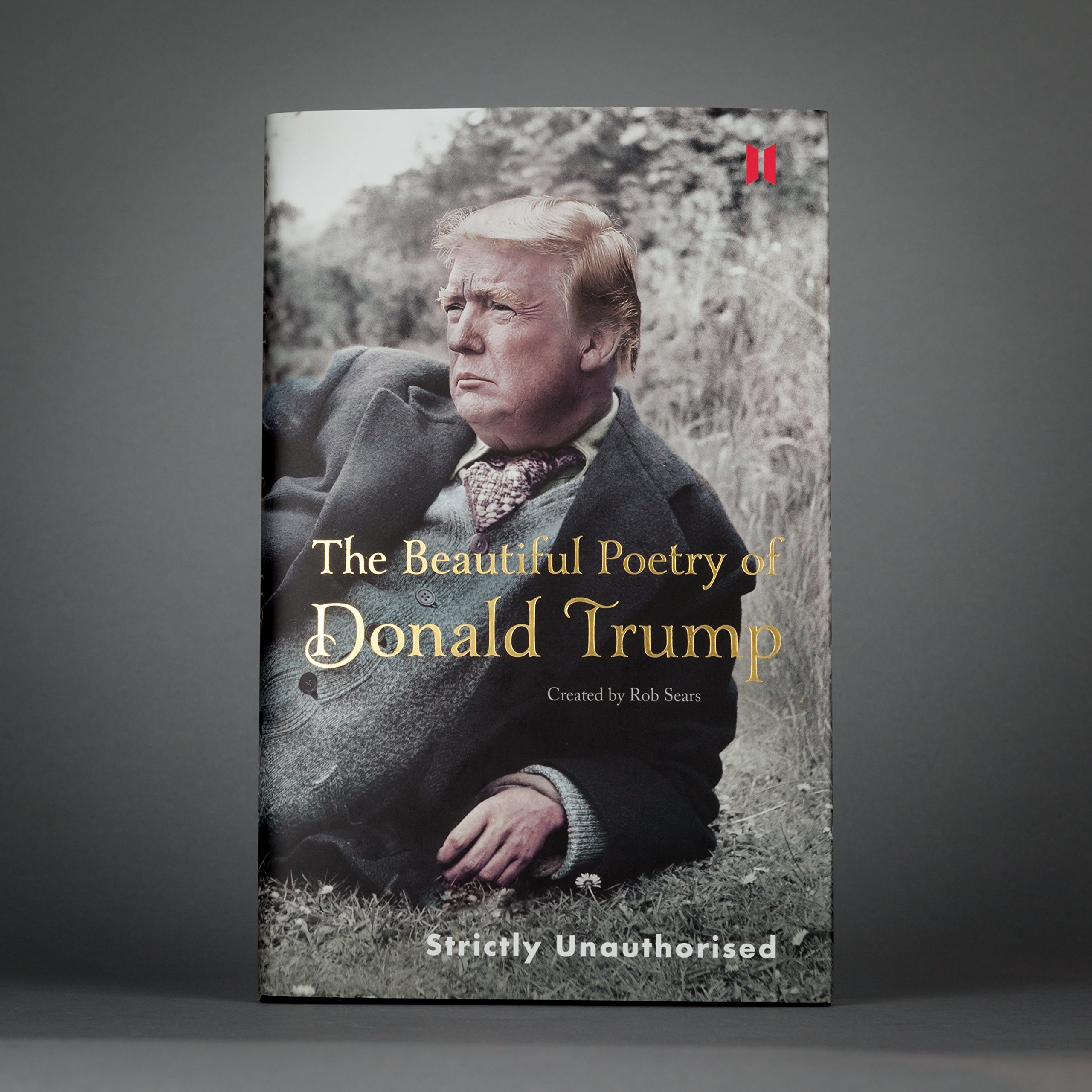 The Beautiful Poetry Of Donald Trump 2
