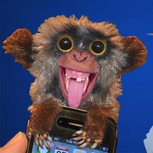Sneekums Pop-up Prank Monkey