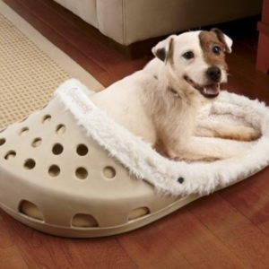 Shoe Shaped Dog Bed_4