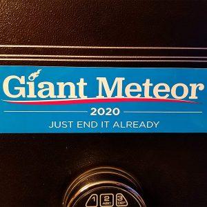 2020 Bumper sticker 1