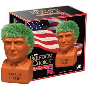 Donald Trump Chia Pet Head 1